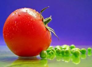 La tomate riche en antioxydant puissant