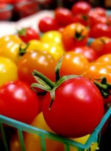 Différents types de Tomate bio