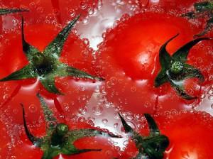 La tomate bio riche en antioxydant puissant